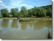 Keysham Angling Association - Century 'Island' Pond