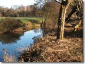 Keysham Angling Association - The River Chew - Chewton Meadow