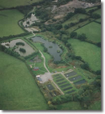 Milemead Fisheries complex